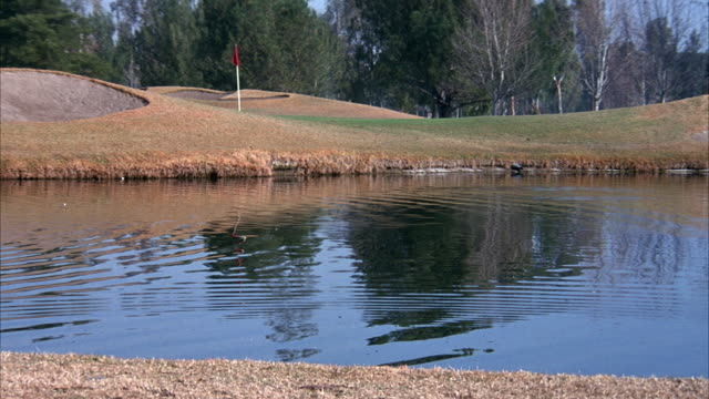 vidéos et rushes de medium angle of green and bunkers on golf course. see water in front of green with duck. see flag stick on green. - balle de golf