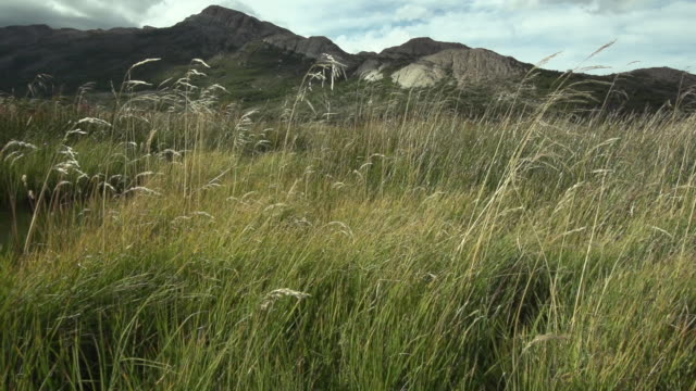 patagonia. spikes and nature in chalten - grundriss stock-videos und b-roll-filmmaterial