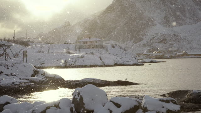 lofoten islands. snowing with sun - aptenia stock-videos und b-roll-filmmaterial