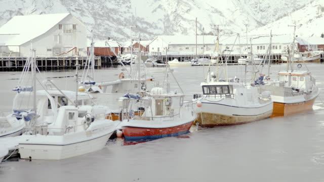 lofoten islands. boats at port - aptenia stock-videos und b-roll-filmmaterial