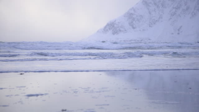 lofoten islands. water waves in a snowy beach - aptenia stock-videos und b-roll-filmmaterial