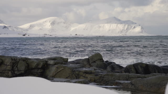 lofoten islands. rocks in the shore with mountains in the fund - aptenia stock-videos und b-roll-filmmaterial