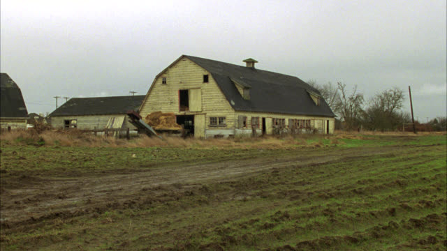 pan right to left from shack or shed on farmland to barn. rundown or abandoned. mud in fg. fields. - barn stock videos & royalty-free footage