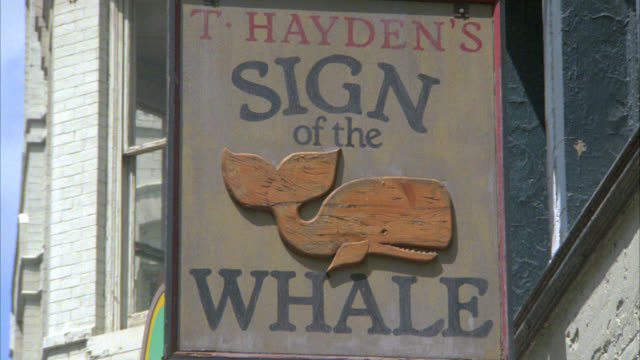 close angle of sing that reads t. hayden's sign of the whale. could be restaurant, bar, pub or tavern. - 1985 stock videos & royalty-free footage