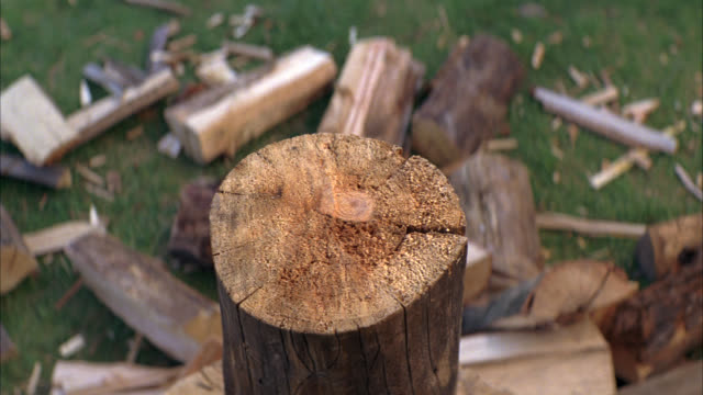 vídeos de stock, filmes e b-roll de close angle of log of wood on chopping block. axe chops log. wood pile on ground next to stump. - tronco termo anatômico