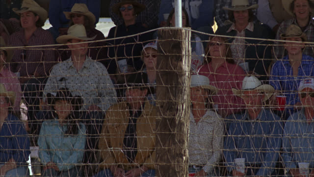 medium angle of people sitting behind chicken wire fence at rodeo. people wear cowboy hats. spectators. - chicken wire stock videos and b-roll footage