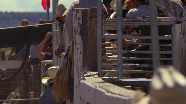 MEDIUM ANGLE OF COWBOY IN COWBOY HAT AND CHAPS STANDING ON BUCKING GATE.  BUCKING GATE RELEASED AND BULL RUNS OUT OF ENCLOSURE. BULL RIDING AT RODEO. RODEO CLOWNS.