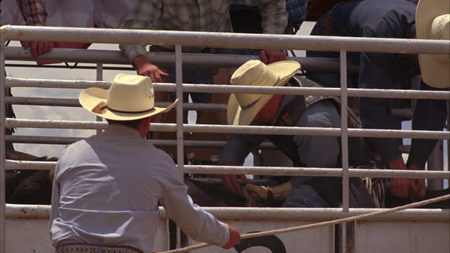 medium angle of cowboy in cowboy hat and chaps standing on bucking gate.  bucking gate released and bull runs out of enclosure. bull riding at rodeo. rodeo clowns. arenas. - enclosure stock videos & royalty-free footage