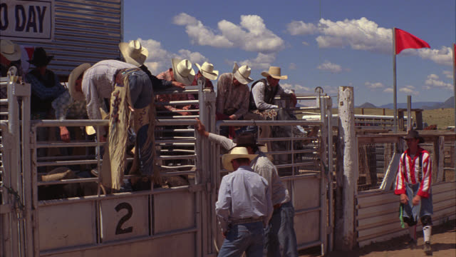 wide angle of cowboys with cowboy hats and chaps preparing for bull riding at rodeo. men stand at bucking gate, fence, or enclosure. cowboy jumps over bucking gate and onto saddle on top of bull. rodeo clowns visible. - saddle stock videos & royalty-free footage