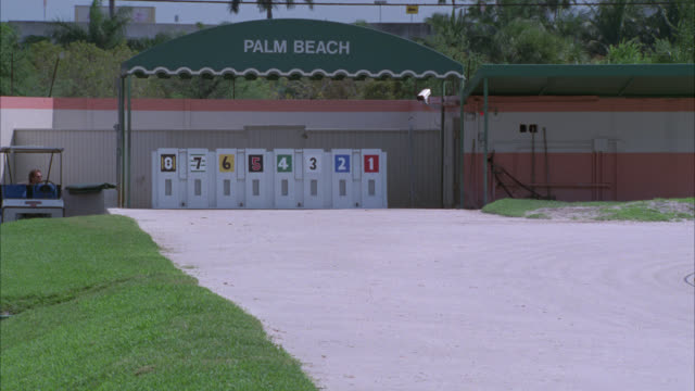 PAN LEFT TO RIGHT OF GREYHOUND DOGS COMING OUT OF THE GATE AND RACING AROUND A TRACK. GAMBLING.