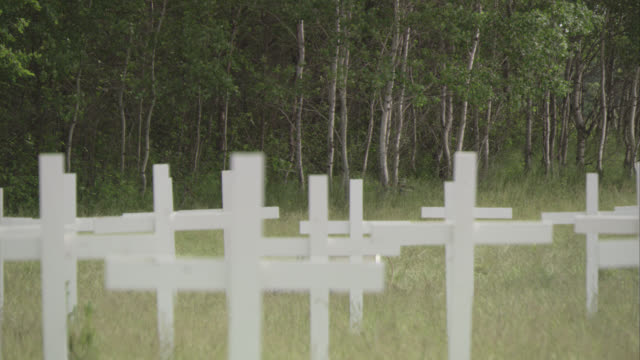 MEDIUM ANGLE OF RURAL CEMETERY OR GRAVEYARD. SEVERAL WOOD CROSSES STAND IN TALL GRASS IN FOREGROUND. FOREST OF SMALL TREES IN BACKGROUND. WOODS. GRAVES. RURAL AREAS.