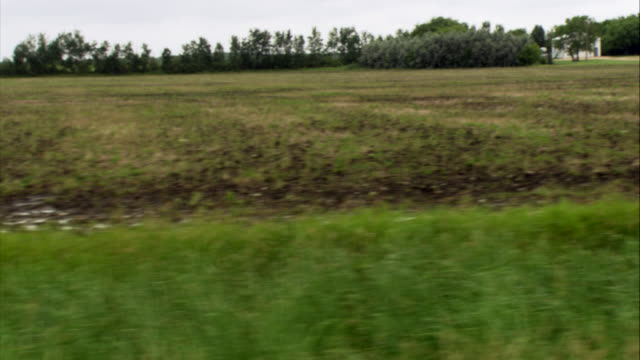 process plate of rural area fields or farmlands. grass, trees, and woods or forest in background on horizon. farmhouse in background. - wood plate stock videos & royalty-free footage