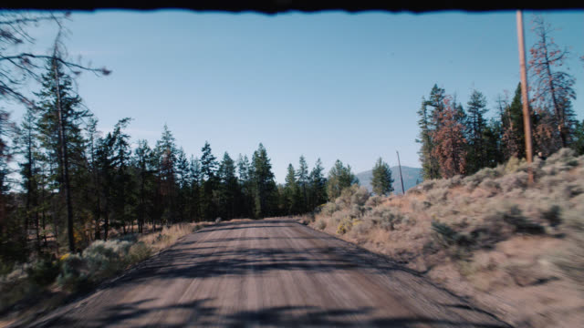 process plate straight forward of mountain road. forests and hills cover dry, arid landscape. could be national park. telephone poles and wires line road. camera goes off road to dirt road leading to cliff or lookout point - arid stock videos & royalty-free footage
