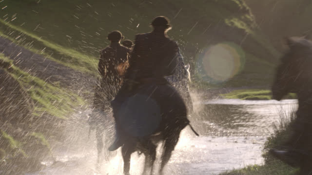 pan right to left to woman accompanied by four men, guards, military escorts or entourage, all on horseback riding through valley along creek or stream. grassy hills. trees. countryside. upper class, nobility or royalty. - hooved animal stock videos and b-roll footage