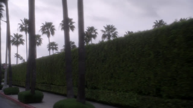 wide angle driving pov on city streets, westbound on melrose ave. paramount pictures movie studio lot entrance or gate. palm trees. billboards or advertisements. hedges or bushes. overcast. hollywood. - paramount studios stock videos & royalty-free footage