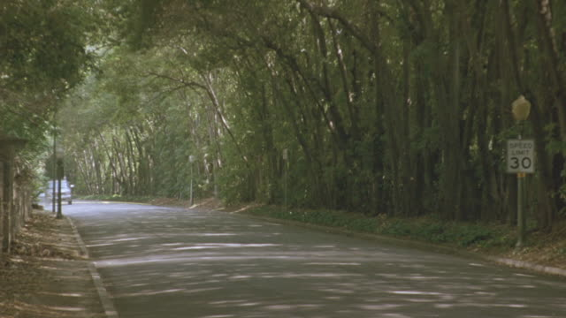 medium angle of shaded two lane street or road. green trees flank road. see ivy bushes and brown dried leaves at base of trees. patches of sunlight filter through canopy of leaves. see speed limit 30 sign on light post at right. gmc suv drives toward came - cadillac stock videos & royalty-free footage