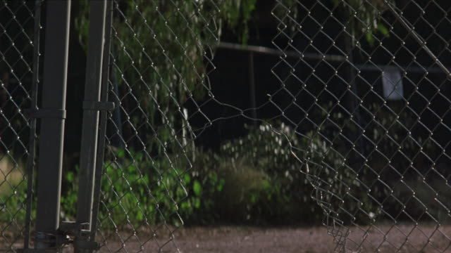 MEDIUM ANGLE STUNT OF BROKEN CHAIN LINK FENCE. SEE GRAY FORD TAURUS DRIVE THROUGH FENCE MOVING AWAY FROM POV. SEE DUST RISE AS CAR DRIVES DOWN STREET IN POSSIBLE RESIDENTIAL AREA. SEE CARS PARKED ON EITHER SIDE OF STREET.