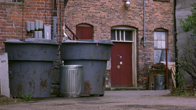 MEDIUM ANGLE OF LARGE GRAY PLASTIC GARBAGE CANS AND SMALL METAL TRASH CAN IN ALLEY. SEE MULTI-STORY BRICK BUILDING IN BACKGROUND. SEE WEEDS AT RIGHT. SEE BLUE GRAY FORD TAURUS APPEAR FROM RIGHT AND CRASH THROUGH TRASH CANS. NEG CUT.