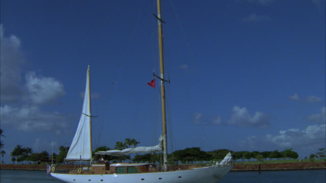 medium angle of white sailboat sailing into harbor. palm trees in bg. white clouds in blue sky. sails. tropical. could be island in bg. - tropischer baum stock-videos und b-roll-filmmaterial