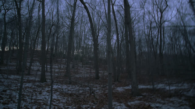 WIDE ANGLE RUNNING POV THROUGH WOODS OR FOREST. DRY LEAVES AND SNOW. BARE BRANCHES ON TREES. COULD BE CAUMSETT PARK IN NEW YORK.