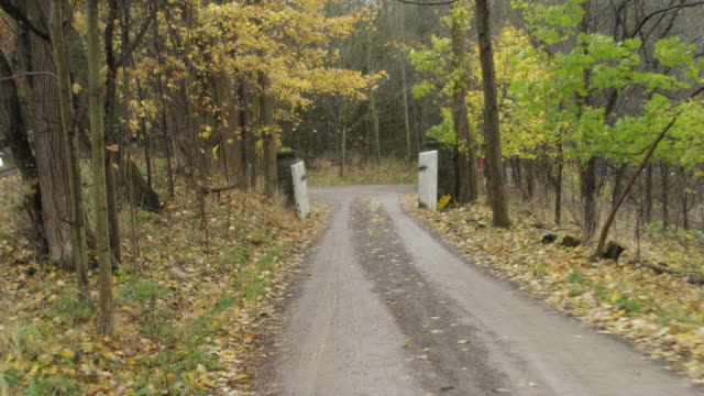 vídeos de stock, filmes e b-roll de process plate straight back of rural or country dirt road surrounded by forest trees, fallen autumn leaves. uphill drive. wooden gate and suv's visible at bottom of road. breezy, overcast sky. - cena rural