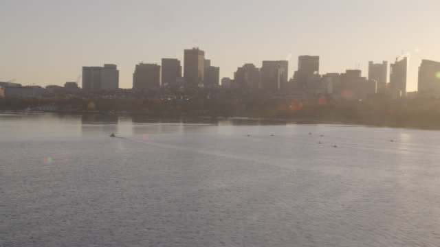 aerial of charles river as rowers move across water. boston skyline with prudential tower and 111 huntington ave buildings visible. trees or park in fg. - charles river stock videos & royalty-free footage