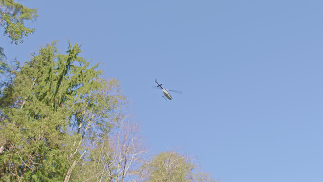 pov from canoe on remote forest stream as helicopter flies overhead. - woodland stock videos & royalty-free footage