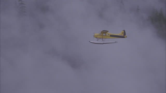 aerial of small private propeller plane with pontoons for water landing flying over pine tree forest or woods. could be seaplane. fog or clouds. could be in mountains. - propeller video stock e b–roll