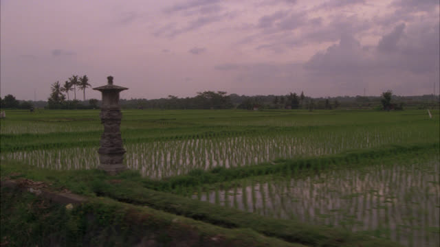 MEDIUM ANGLE MOVING POV OF RICE PADDY FIELD ON SIDE OF COUNTRY ROAD. COULD BE FARMLAND. WORKERS VISIBLE IN FIELD. BICYCLES VISIBLE ALONG STONE WALL LINING ROAD. FARM HOUSE OR BARN VISIBLE. COULD BE PROCESS-PLATES.