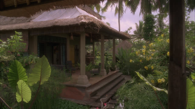 wide angle of house with thatched roof in rural area surrounded by tropical plants, trees, and flowers. palm trees.. could be vacation resort. - strohdach stock-videos und b-roll-filmmaterial