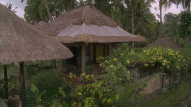 high angle down of houses with thatched roof in rural area surrounded by tropical plants, trees, and flowers. palm trees. could be vacation resort. - strohdach stock-videos und b-roll-filmmaterial