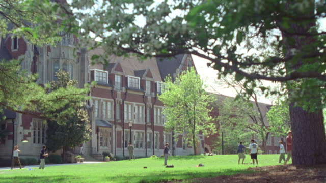 wide angle of large green leafy trees. see  college aged men playing frisbee on green lawn. sunny day. men dressed in short-sleeved shirts. see gothic style limestone masonry multi-story building in bg. could be used for college campus building. see peopl - short sleeved stock videos & royalty-free footage