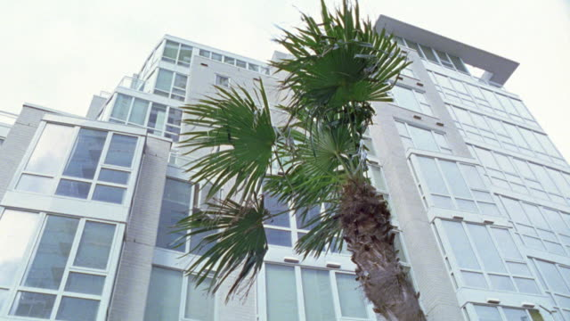 "vidéos et rushes de up angle of modern office building with large glass windows. upper class condominiums, apartment building lofts. palm tree in front of building. matching dx/nx 0900-02a to 0900-02r, 0900-05 to 0900-07, 0900-09.<p><a href=""https://www.sonypicturesstockfoot - stéréotype de la classe supérieure"