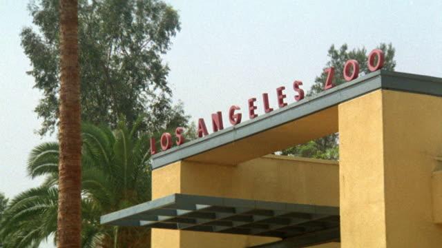 """vídeos y material grabado en eventos de stock de medium angle of los angeles zoo entrance with  """"los angeles zoo"""" sign across entrance. palm trees near building. - zoológico"""