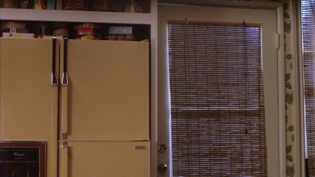 MEDIUM ANGLE SHOWS A 1970S STYLE KITCHEN WITH AVOCADO GREEN REFRIGERATOR, DOOR WITH RATTAN SHADE LEADING TO EXTERIOR. AND WALLS WITH LEAF WALLPAPER. FOOD PRODUCTS VISIBLE ON TOP OR REFRIGERATOR INCLUDING BOXES OF CEREAL, JARS OF PRETZELS AND MUFFINS.
