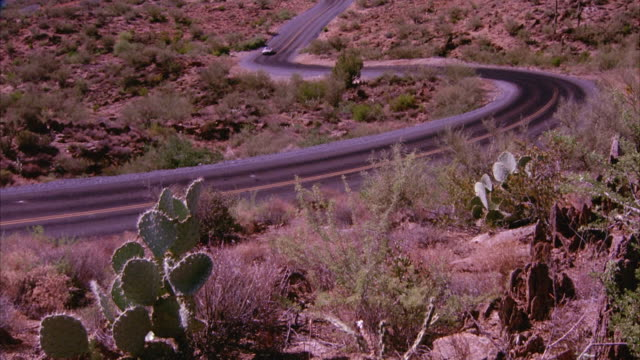WIDE ANGLE OF ROLLING GREEN HILLS OR SLOPED MOUNTAINS. CAMERA PANS DOWN TO SEE CREAM-COLORED MERCEDES DRIVING UP WINDING ROAD OR FREEWAY THAT CUTS THROUGH DESERT. SEE CACTI AND DRIED BRUSH GROWING ON DESERT SANDS.