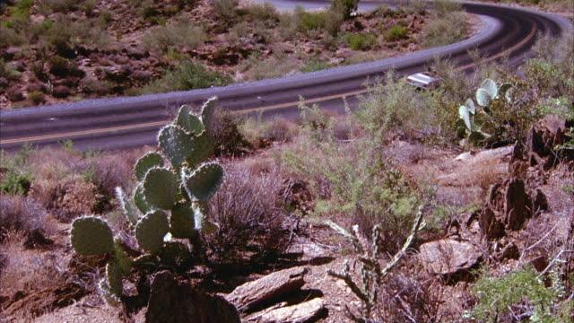 wide angle of bushes and cactus dotting barren landscape. see mercedes convertible driving down winding desert highway toward the camera until it becomes a mere spot in the distance. - cactus video stock e b–roll