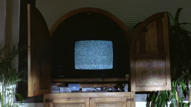 medium angle of television with static screen inside of wooden home entertainment cabin. see plants on either side of the cabinet in the living room. see eerie shadows. - television static stock videos & royalty-free footage