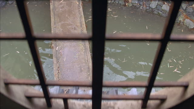 high angle down of pond or moat seen through barred open window. wood board or plank bridge extends over water. rock wall is visible. could be small river. leaves and grass float in the water. - moat stock videos & royalty-free footage