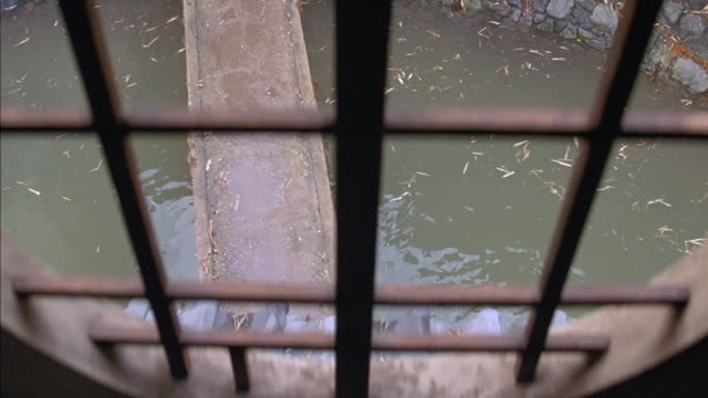 HIGH ANGLE DOWN OF POND OR MOAT SEEN THROUGH BARRED OPEN WINDOW. WOOD BOARD OR PLANK BRIDGE EXTENDS OVER WATER. ROCK WALL IS VISIBLE. COULD BE SMALL RIVER. LEAVES AND GRASS FLOAT IN THE WATER.