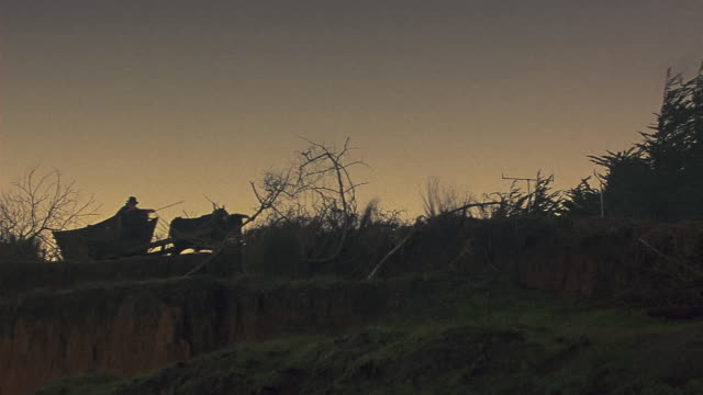 wide angle of ox pulling cart or wagon along country road. could be farmer. trees and dead branches line road. could be cliff side. oxen. - ox cart stock videos & royalty-free footage