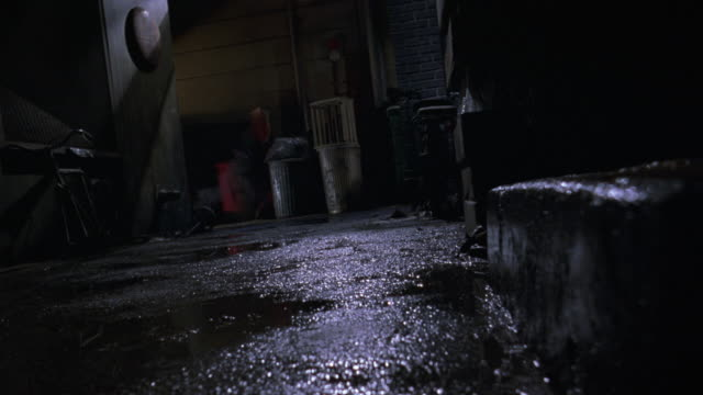 vídeos y material grabado en eventos de stock de medium angle of wet alley. see trashcans and steam rising in background. see step to frame right. see two dark cats moving away from pov. see cats jump off step and move down alley and exit behind wall. - callejuela