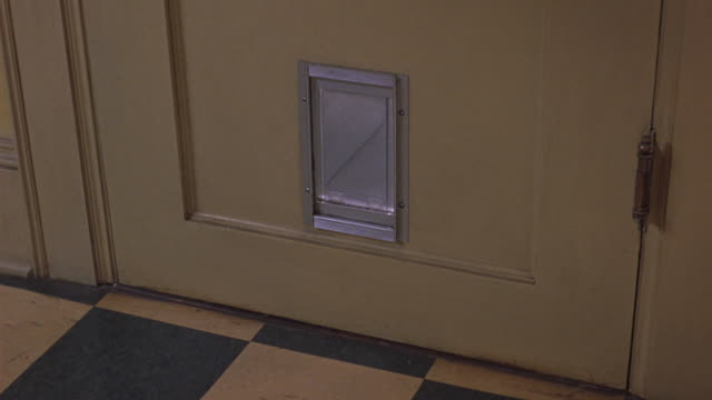 MEDIUM ANGLE OF CAT DOOR ON SIDE OF YELLOW DOOR. SEE BLACK AND GREY TABBY GO THROUGH DOOR. SEE CAT LOOK UP THEN EXIT FRAME. SEE YELLOW AND GREEN CHECKERED FLOOR. COULD BE INTERIOR OF KITCHEN.