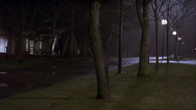 medium angle of empty street in suburban neighborhood. see dark figures of people on a porch or sidewalk. wet pavement or road in foreground. see bare branched trees in foreground. see street lamps and light coming from houses. residential areas. - bare tree stock-videos und b-roll-filmmaterial