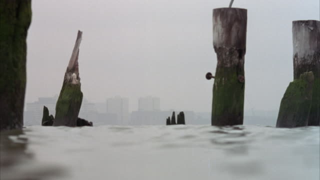 medium shot inside water of broken wooden logs or pilings coming out of the water. skyline in the faint bg. foggy, overcast day. water rises and blocks shot periodically. could in east river. pans back and forth of logs. - {{ contactusnotification.cta }} stock-videos und b-roll-filmmaterial