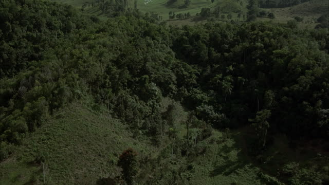 aerial, landscape. see lush green foliage. could be any central or south american landscape. - cuba stock videos & royalty-free footage