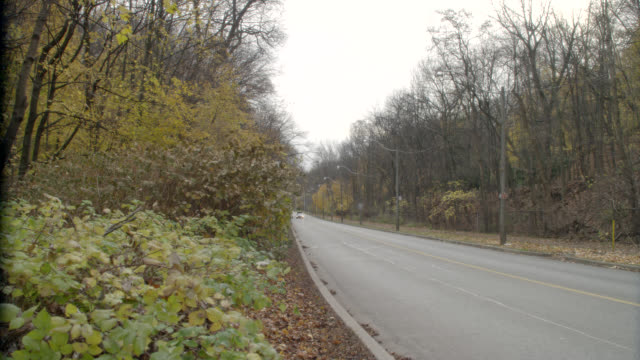 stockvideo's en b-roll-footage met tracking shot wide angle of blue pickup truck carrying load. street lamps, trees, autumn leaves falling onto small country highway visible. overcast sky. - ontario canada