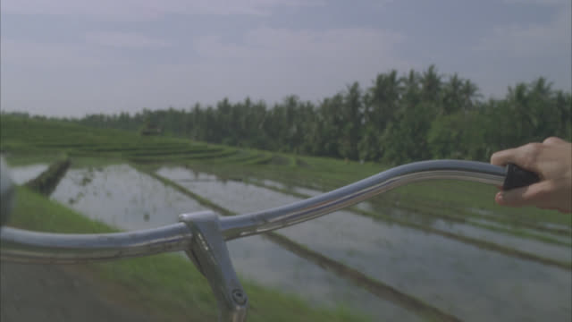 CLOSE ANGLE OF HANDLEBARS OF BICYCLE. HANDS VISIBLE. BIKE MOVES THROUGH COUNTRYSIDE NEAR RICE PADDY FIELDS. COULD BE FARMLAND. COUNTRY OR DIRT ROAD.
