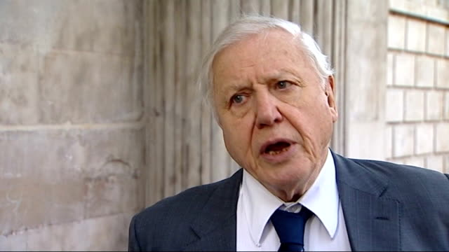100th anniversary of captain scott expedition to south pole st paul's memorial service ext attenborough interview sot we all need heroes and captain... - 100th anniversary stock videos & royalty-free footage