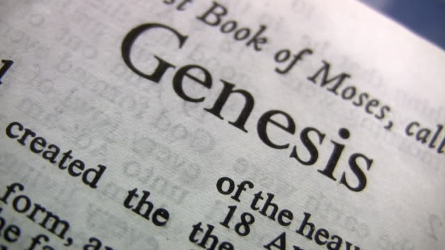 hd 1080i genesis 2 - bible stock videos & royalty-free footage